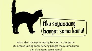 Kenali_Suasana_Hati_Kucing_dari_Gerak_Ekornya_5