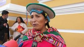 """Lidia Patty dice que si fuese Ministra de Gobierno haría aprehensiones """"de  canto"""" - El País - Opinión Bolivia"""