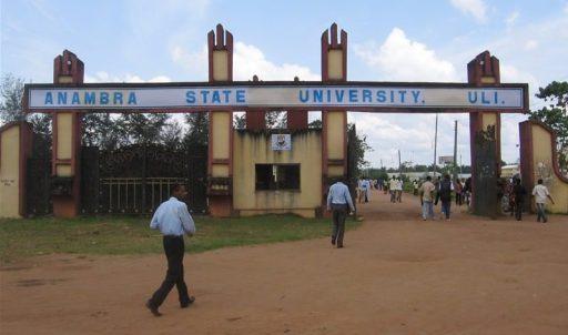 OpinionNigeria-ANSU