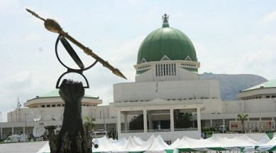 The Nigerian National Assembly
