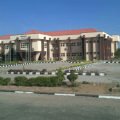 Nigerian universities: Comparative lessons on achieving world-class status -By Niyi Akinnaso