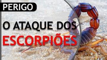 miniatura escorpioes