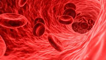 sangue-masculino