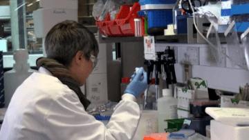 Vacina-de-Oxford-contra-Covid-19-começa-a-ser-testada-em-profissionais-de-saúde-de-SP