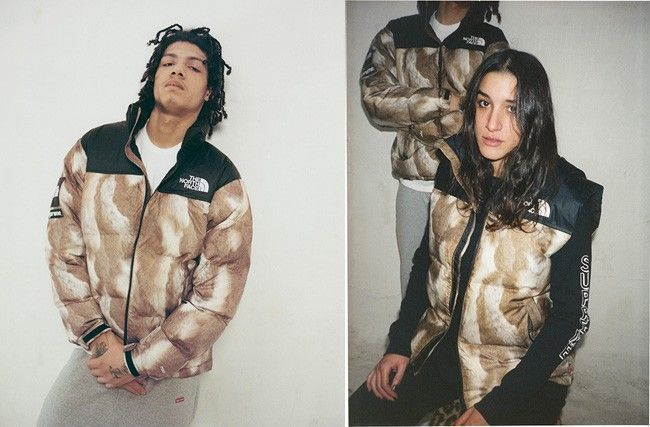 supreme northface