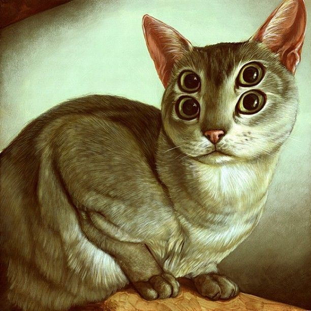 cats-weldon_4