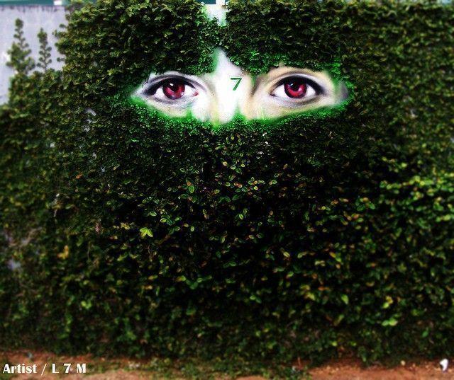 yeux mur feuillage