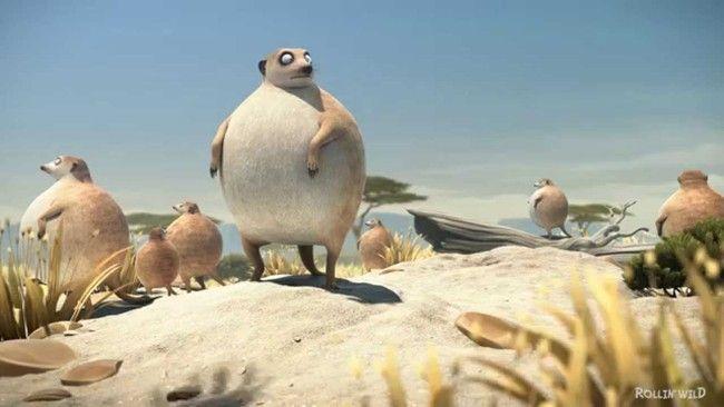 mangoustes-fat-animals