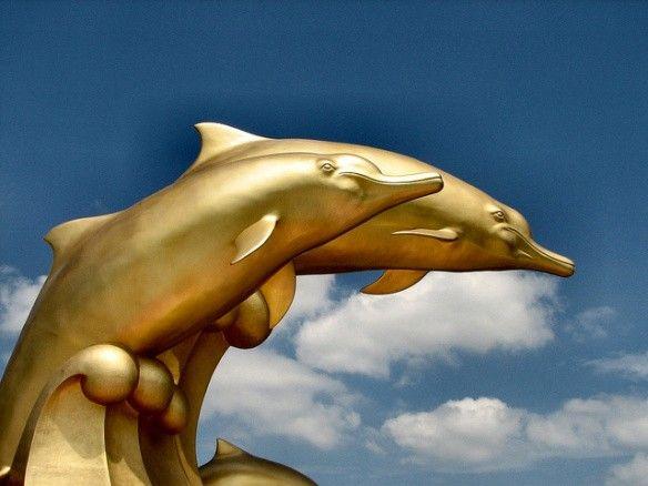 golden-dolphin