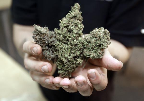 Medical Marijuana Dispensaries
