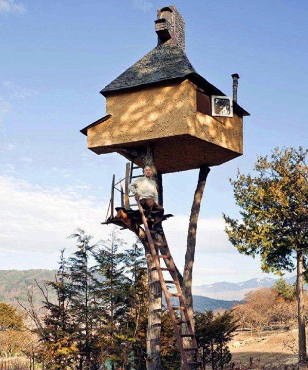 maison arbre 2