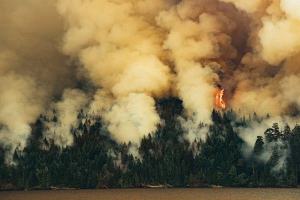 Circa-1983-Dog-Mountain-Forest-Fire-01