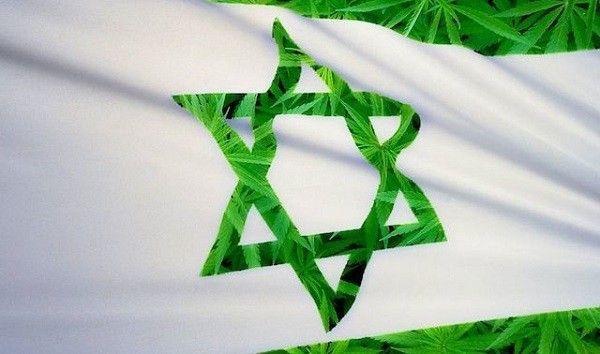 vice-la-weed-cacher-gil-amsellem-drapeau