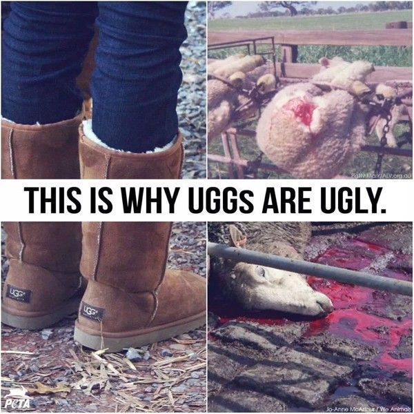 uggs-are-ugly