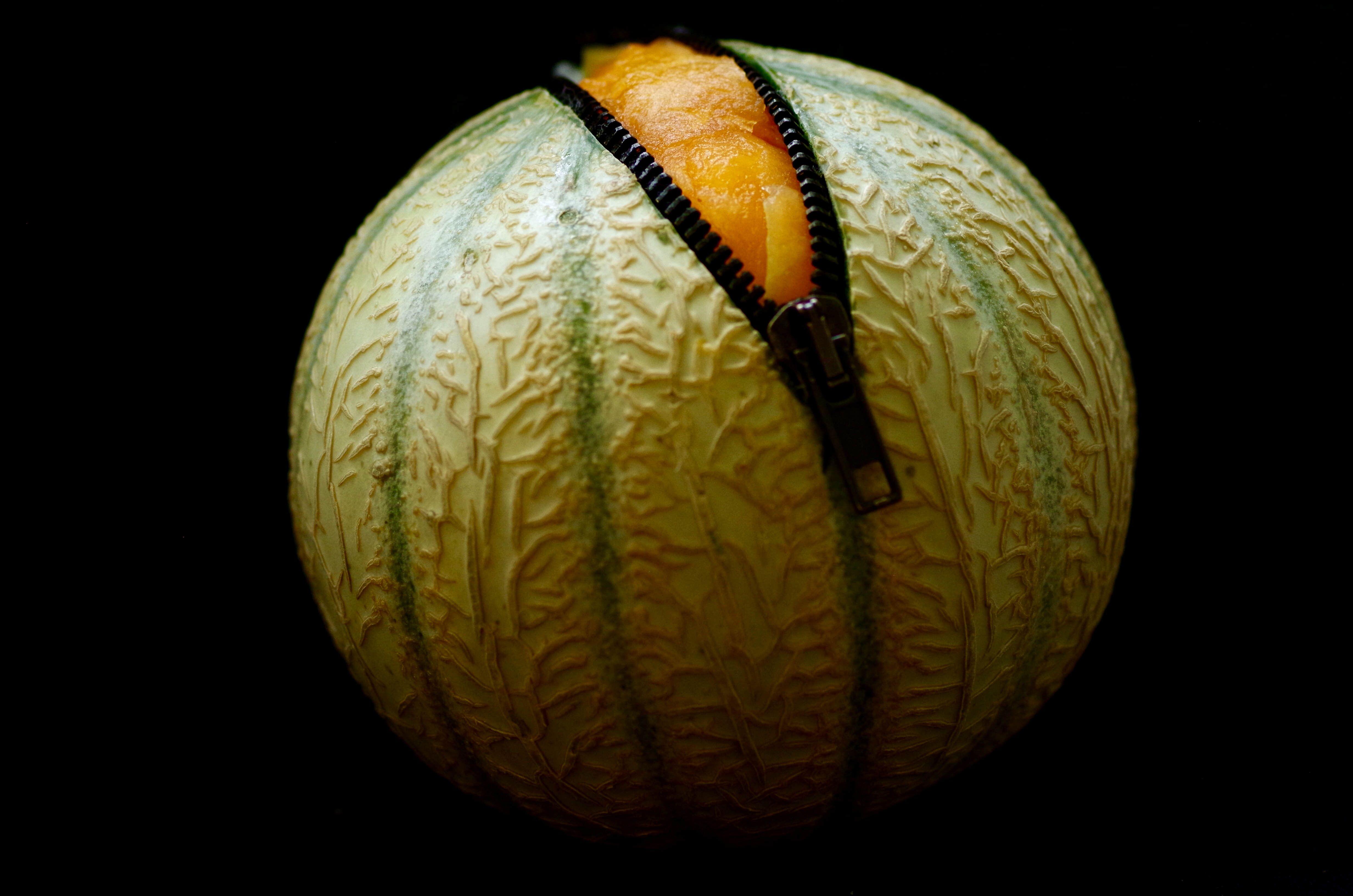 omnifood-Melon-facile-