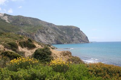 Zakynthos: valleien, veldbloemen, honden en asfaltwegen bij Kalamaki