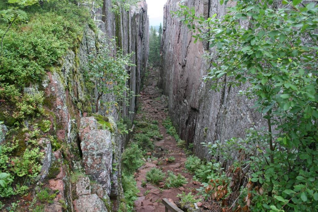 Skuleskogen: Hoogtepunt van de Hoge Kust