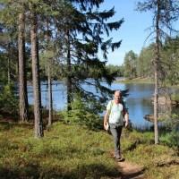 Glaskogen Natuurreservaat: Wandelen langs meren en bossen