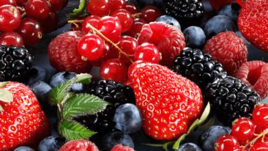 Photo of Inician ventas de berries mexicanos a China