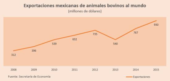 exportaciones bovinos