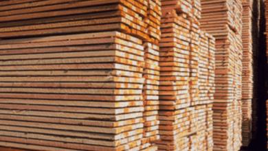 Photo of Estados Unidos impone cuotas de hasta 24.12% a la madera de Canadá