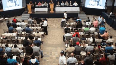 Photo of Serra Puche pide que Secretaría de Economía otorgue más cupos a través de subastas
