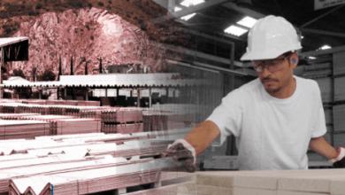 Photo of Elementia opera 21 plantas que producen materiales ligeros para la construcción