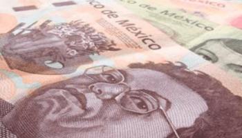 En la semana, el tipo de cambio tocó un mínimo de 23.8479 pesos y un máximo de 25.2892 pesos. El euro-peso alcanzó un mínimo de 25.8651 y un máximo de 27.2911 pesos por euro en las cotizaciones interbancarias a la venta.