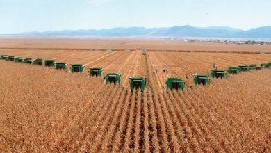 Photo of México ofrece oportunidades en el comercio de fertilizantes