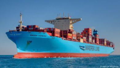 Photo of Maersk: comercio mundial de contenedores subirá entre 1 y 3%
