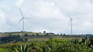 Photo of Soriana contrata energía con Iberdrola, Enhol y Eureka Ventures