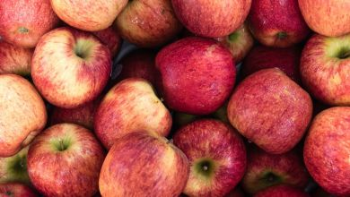 Photo of EU aumentará exportaciones de manzanas a México