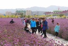 Los turistas de China en el exterior están creciendo a tasas de doble dígito anuales.