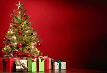 Photo of China abarca 79.3% de las exportaciones de árboles de navidad