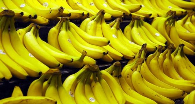 El banano es uno de los cultivos sobresalientes de Ecuador y de hecho es el cultivo con la mayor producción en términos de producto cosechado, de acuerdo con la FAO.