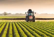 Photo of Canadá eliminará subsidios a las exportaciones en 2020
