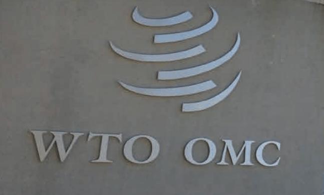 Los Miembros de la Organización Mundial de Comercio (OMC) examinaron el ofrecimiento de Kazajstán de acoger la 12ª Conferencia Ministerial (MC12) en Nursultán en junio de 2021.