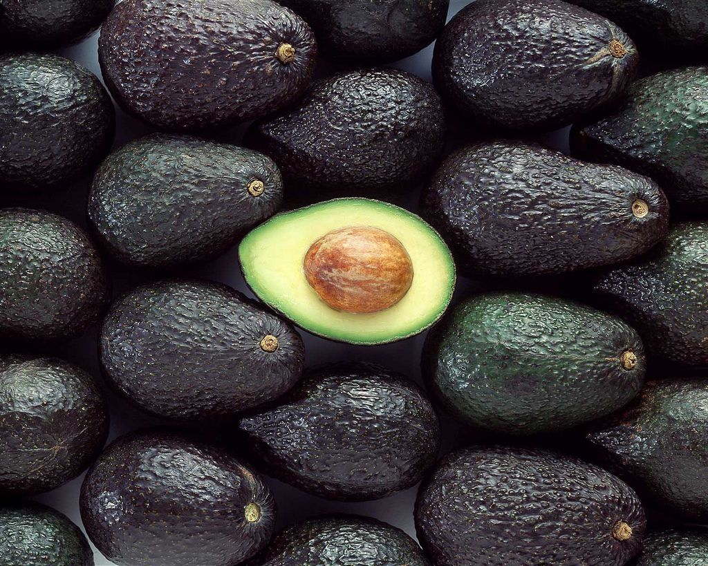 "Exports of Hass avocados and blueberries can now be made from California to the United States, as part of ""Phase 1"" of the trade agreement between the United States and China."