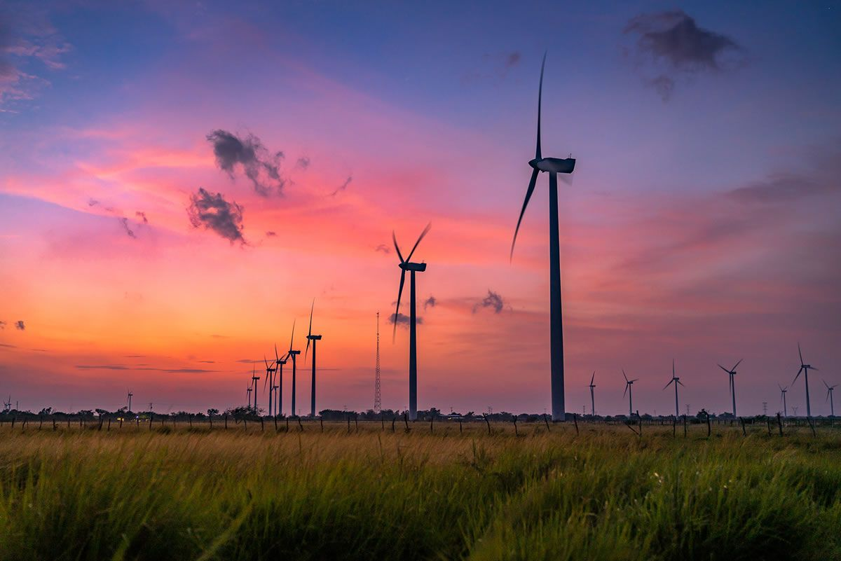 Grupo México prepares the start-up of its Fenicias Wind Farm, in which it will invest 250 million dollars.