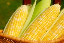 Corn led the imports of products from the agri-food sector in Mexico in 2020, according to data from the Ministry of Agriculture.