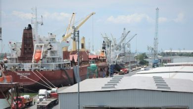 The Ministry of Communications and Transportation (SCT) established four actions to increase the movement of cargo in the Port of Tampico, Tamaulipas, in Mexico.