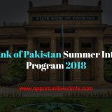 Pakistan Summer Internship Program