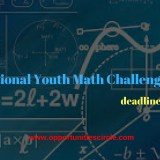International Youth Math Challenge