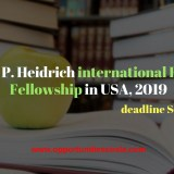 international Research Fellowship