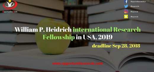 international Research Fellowship