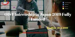 OIST Internship in Japan 2019 Fully Funded - Opportunities Circle Scholarships, Fellowships, Internships, Jobs