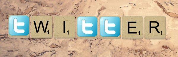 bio on twitter