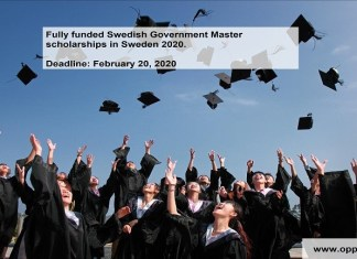 Fully funded Swedish Government Master scholarships in Sweden 2020