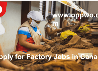 Factory Jobs in Canada