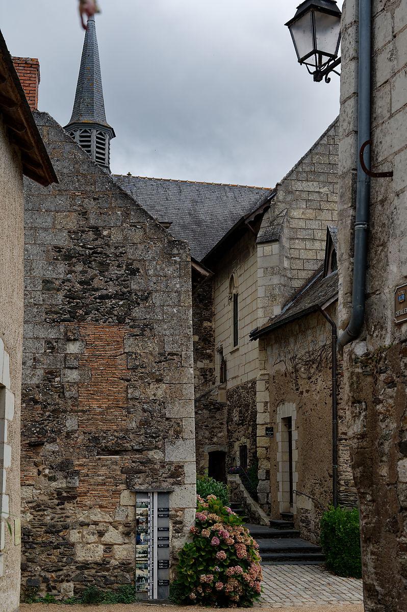 Loire, Béhuard